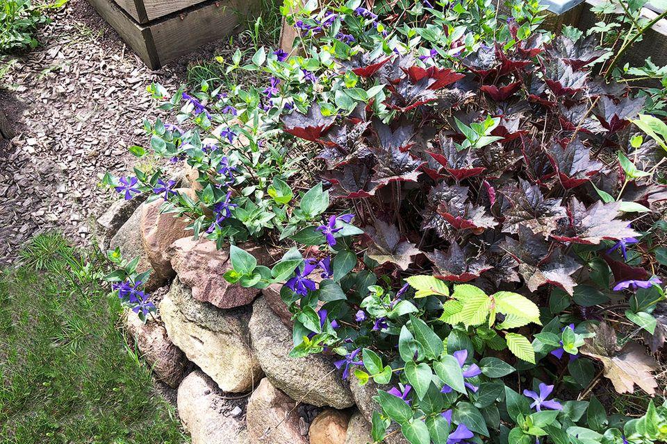 Steingartenbeet für den Schatten