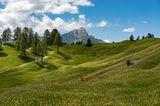 Südtirol: Pusterstal, Armentarawiesen