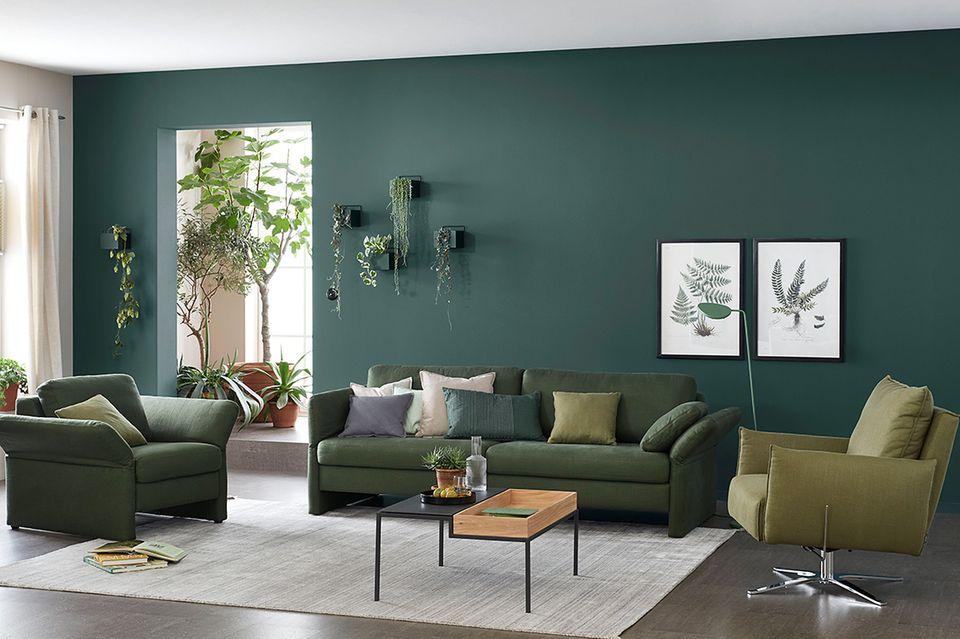 """Designfarbe """"Besinnliches Waldgrün"""""""