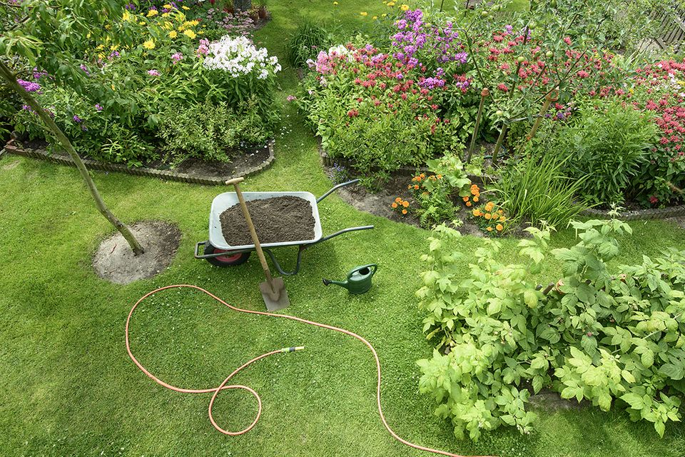 Rasen säen: Neben Blumen verschöert ein Rasen jeden Garten