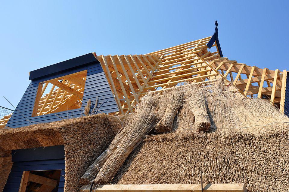 Bau eines Reetdaches