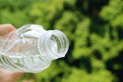 Blumen und Pflanzen bewässern im Urlaub: Lifehack mit PET-Flasche