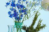 Rittersporn Blumenstrauß