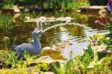 Wasserspeier in Entenform von Oase