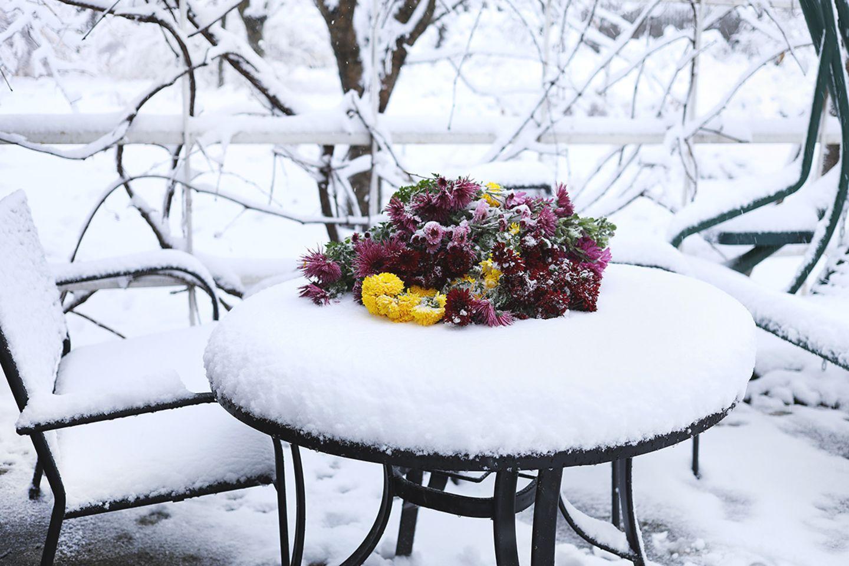 Garten winterfest machen: Gartenmöbel unterstellen oder dekorieren