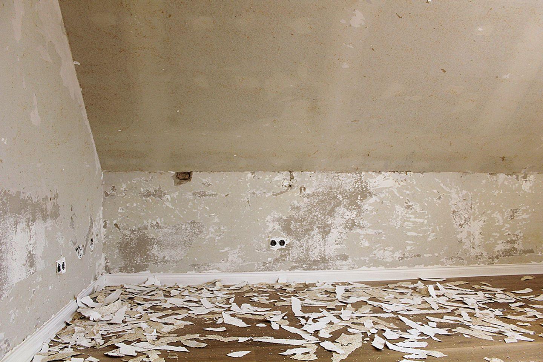 Tapete entfernen auf Gipskarton oder Rigipsplatten   Bild 20 ...