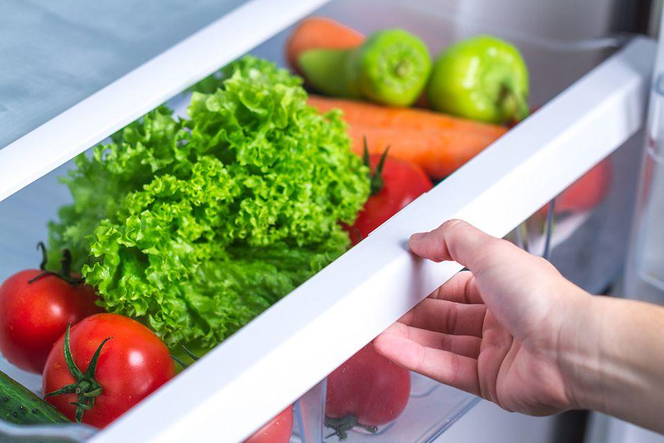 Lebensmittel lagern - Gemüse und Salat im Gemüsefach eines Kühlschranks