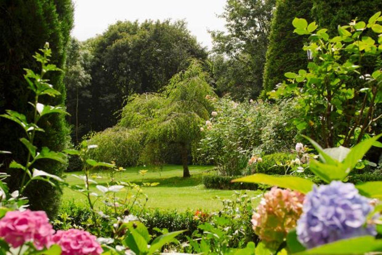 Traumhafter Garten mit Hortensiem im Vordergrund