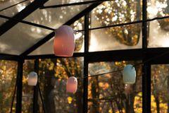 Zart: Lichterkette im Pastell-Look von Weltevree - Bild 4