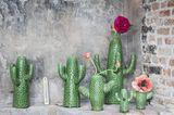 Deko-Kaktus von Serax - Bild 4