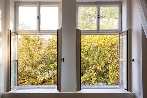 Zwei offene Doppelfenster, draußen ist Herbstlaub zu sehen
