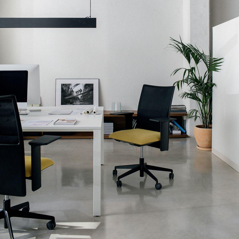 Office-Situation mit Schreibtisch und Stuhl, Zimmerpflanze