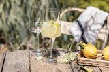 Zwiesel Glas Sommerdeko