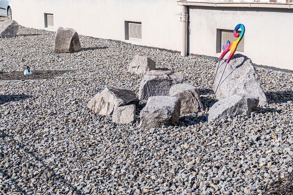 Ein Vorgarten aus Schotter und großen Steinen