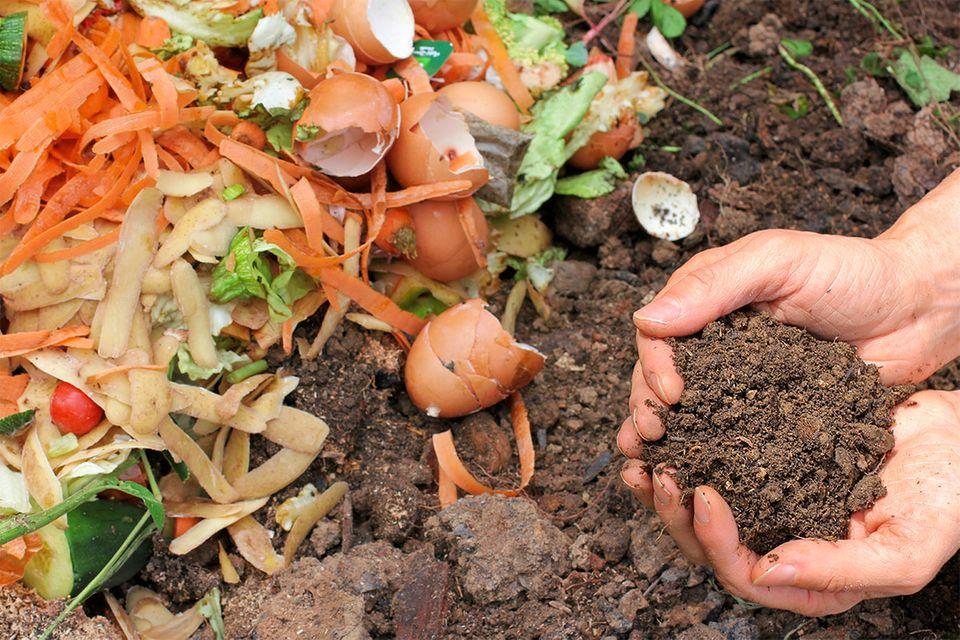 Gemüse- und Küchenabfälle für den Kompost