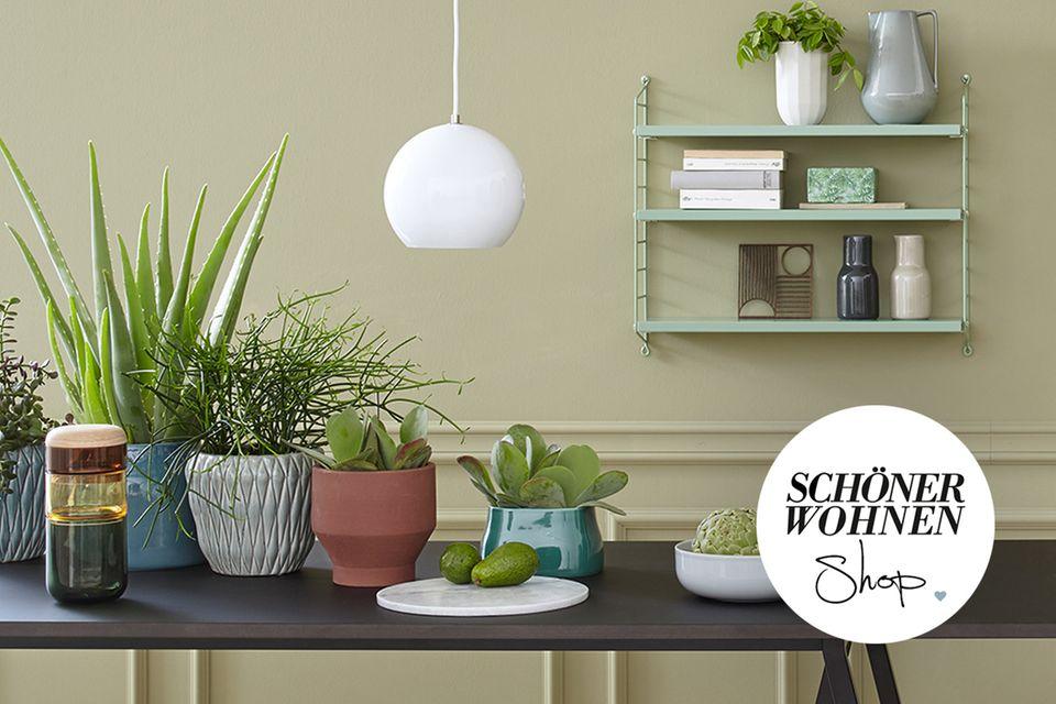 SCHÖNER WOHNEN-Shop Teaser Garden Academy Button