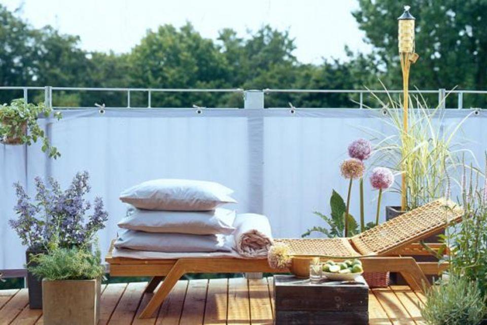 Pflanzen für Garten, Haus & Wohnung