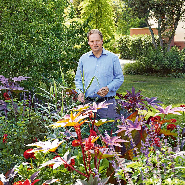 Staudenliebhaber Cassian Schmidt inmitten von Blumen in seinem Garten