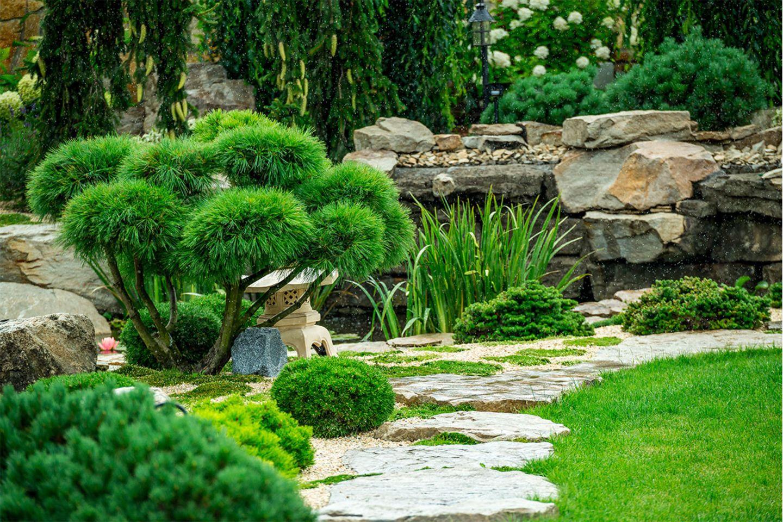 Japanisch inspirierter Garten mit Steinen und Gehölz