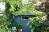 Sichtachse im Schattengarten auf ein blaues Gartenhaus